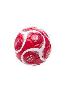 Lely fodbold